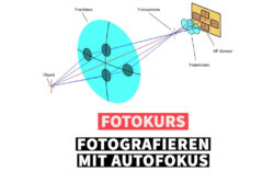 Online Fotokurs fotocommunity