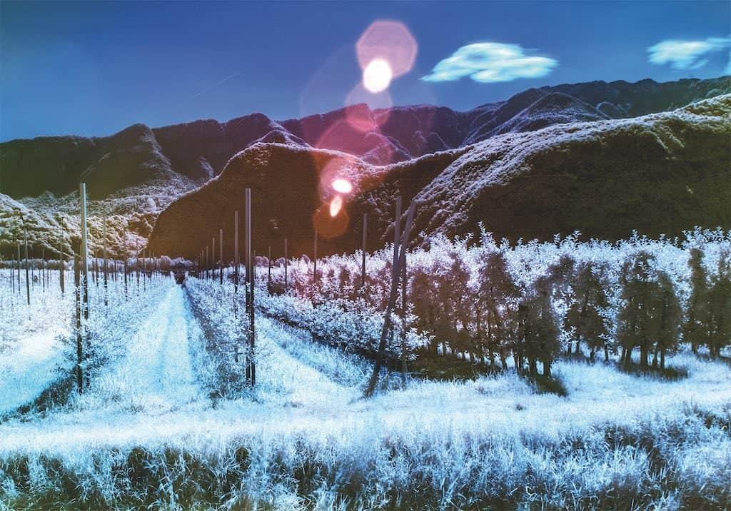 Landschaft rot und blau dank der Infrarotfotografie