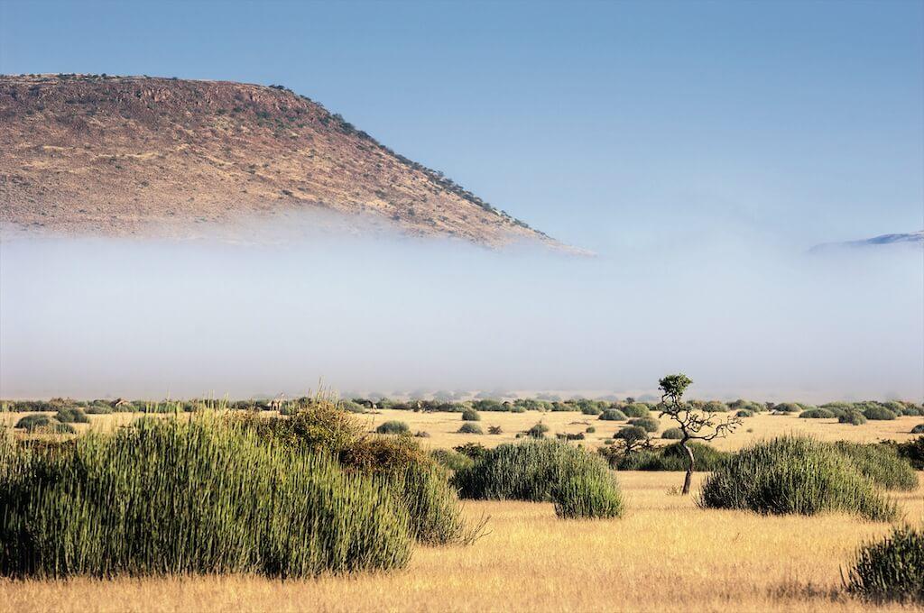 Nebelschwaden in Namibia