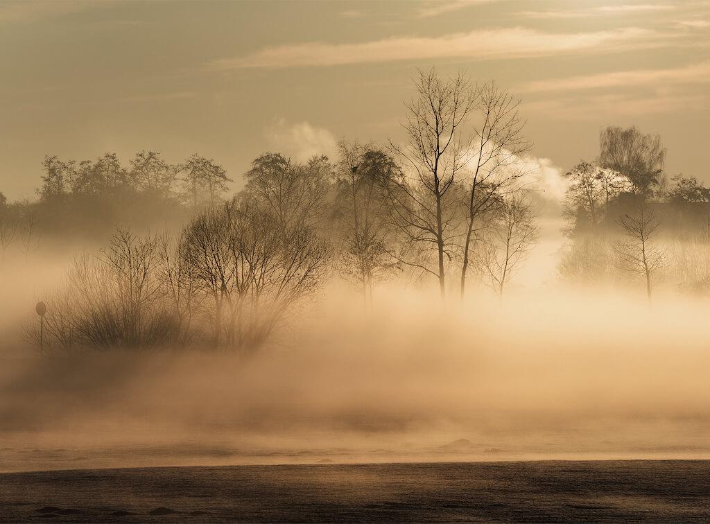 Nebel Landschaft mit Gegenlicht