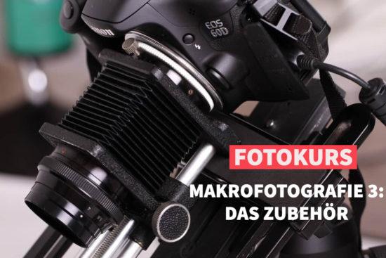 Online-Fotokurs Makrofotografie