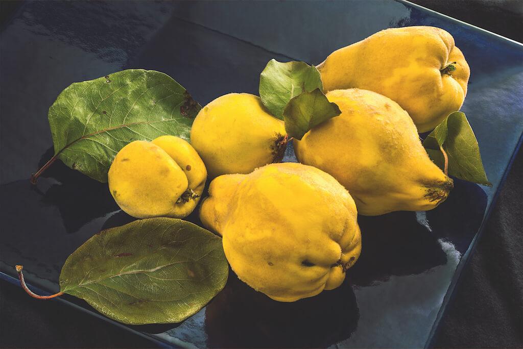 Früchte als Motiv in der Food-Fotografie