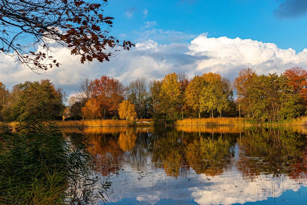Herbst in Berlin fotografieren : Britzer Garten