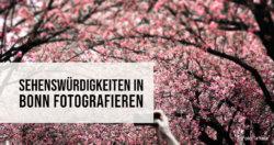 Sehenswürdigkeiten in Bonn fotografieren