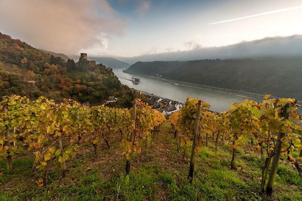 Ein schönes Fotomotiv für Fotografen: Die Burg Pfalzgrafenstein in Kaub