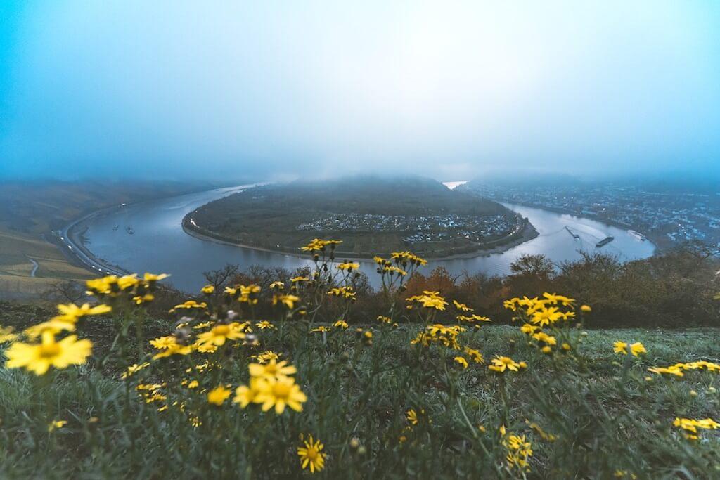 Die Rheinschleife bei Boppard, Mittelrhein fotografieren