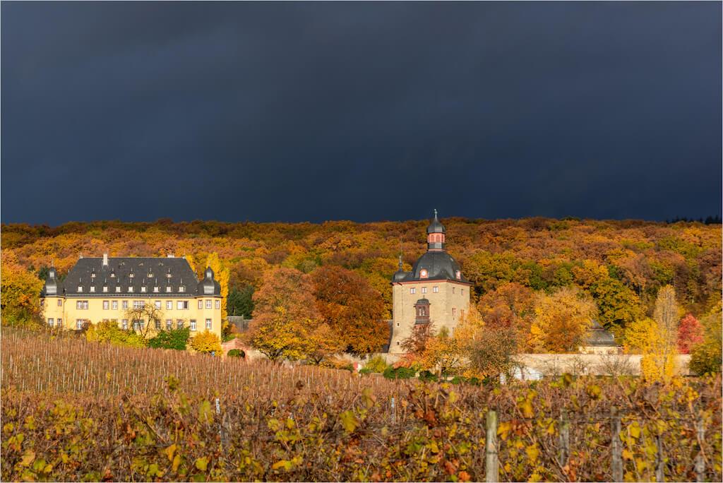 Fotomotive im Rheingau: Schloss Vollrads