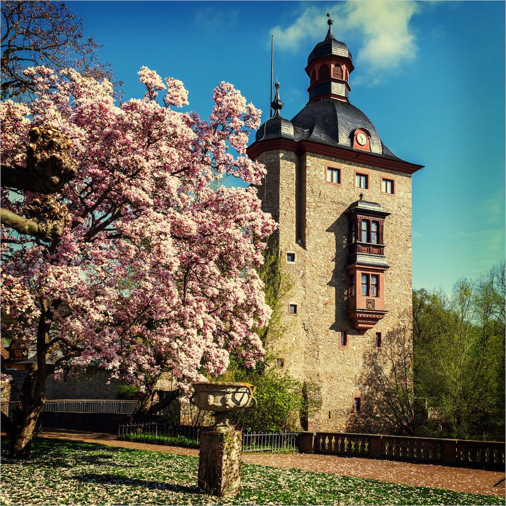 Der Wasserturm des Schloss Vollrads