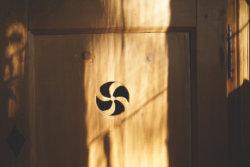 AWB kontra Preset: der automatische Weißabgleich beim Tageslicht