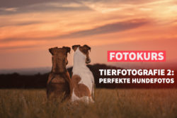 Fotokurs der fotoschule Premium