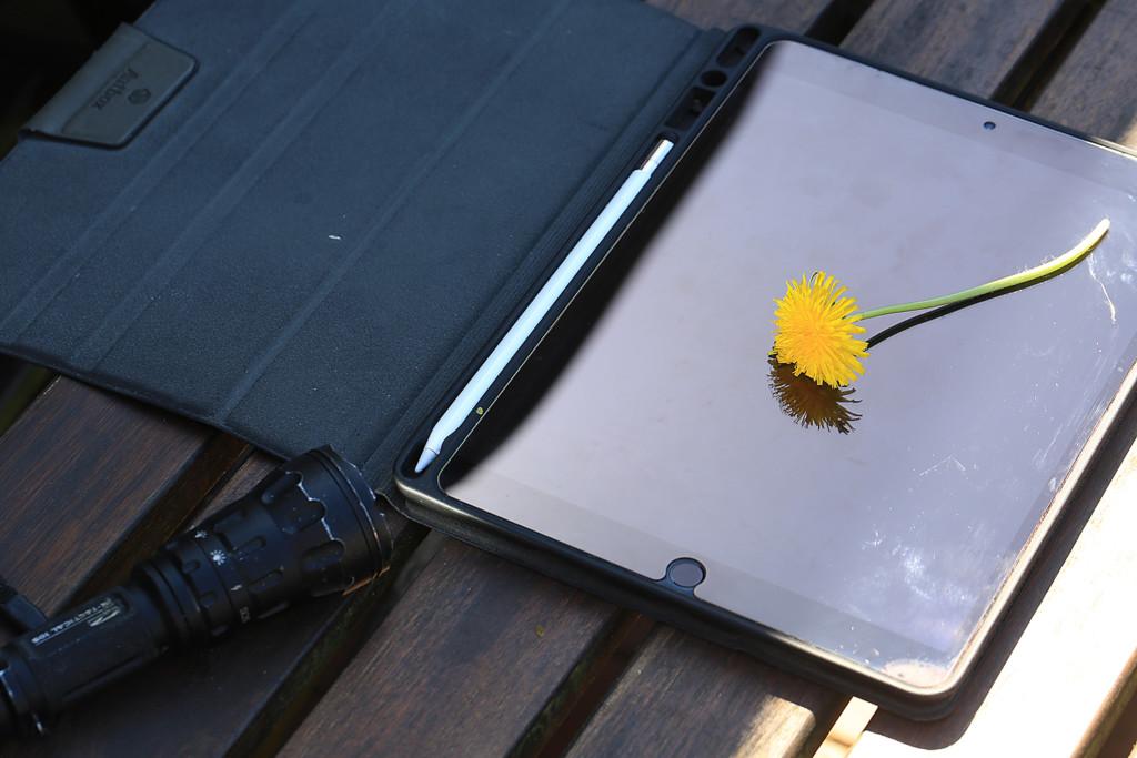 Eine Taschenlampe hilft beim Fotografieren eines Löwenzahns auf einem Tablet