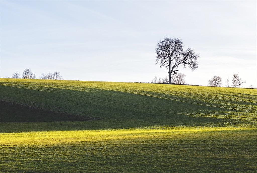 Nachmittagslicht scheint auf hügelige Landschaft