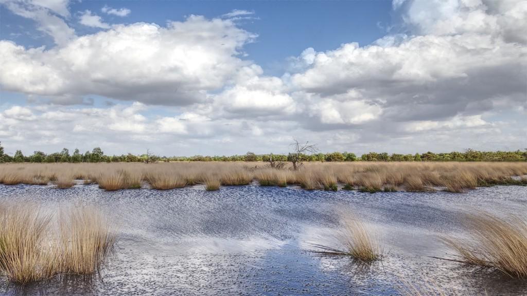 Landschaftsfotografie in der Grafschaft