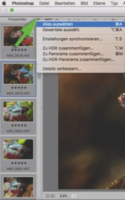 Screenshot RAW-Bearbeitung