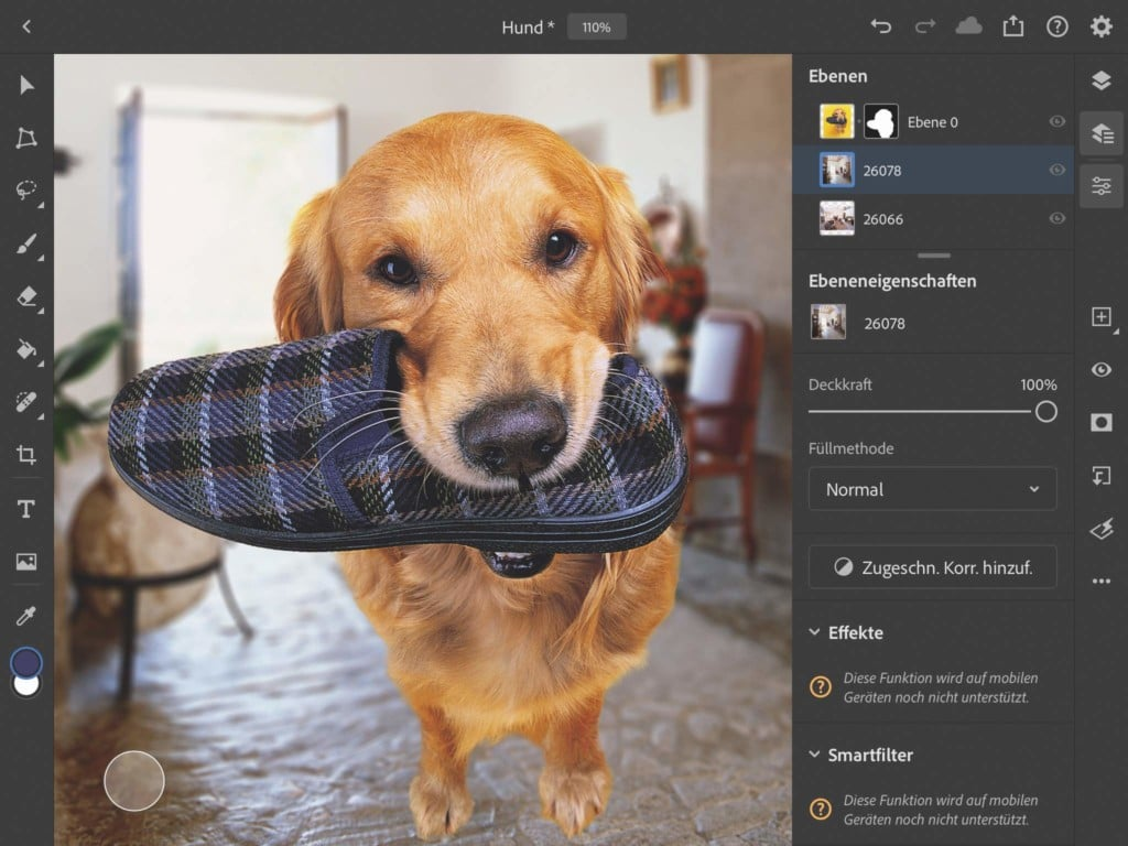 Photoshop fürs iPad - Hund mit Pantoffel