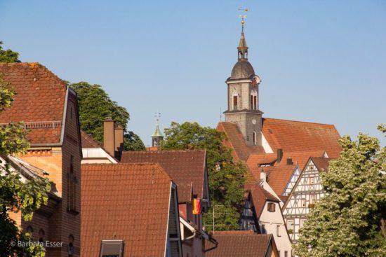 Stadtkirche mit Dächern der Altstadt in Marbach