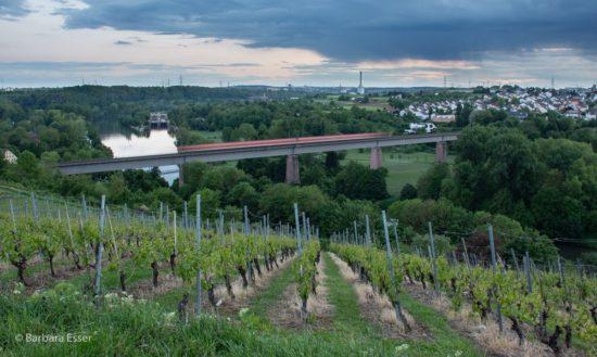 Aussichtsplatz über dem Neckar in Marbach - Blick nach Süden