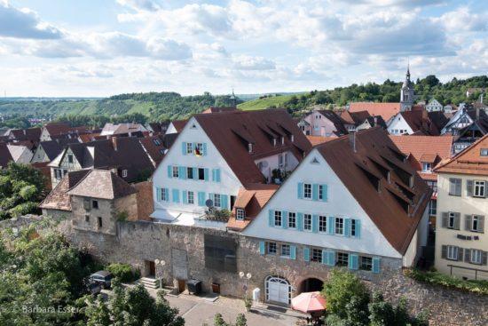 Stadtmauer, Altstadt, Stadtkirche und Weinberge in Marbach