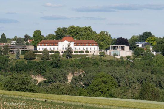 Blick zur Schillerhöhe in Marbach