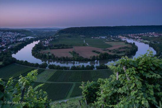 Engste Neckarschleife in Marbach