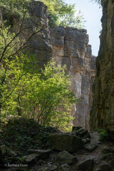 Hessigheimer Felsenharten - Bedeutende Felsformationen und Naturklettergarten in Marbach