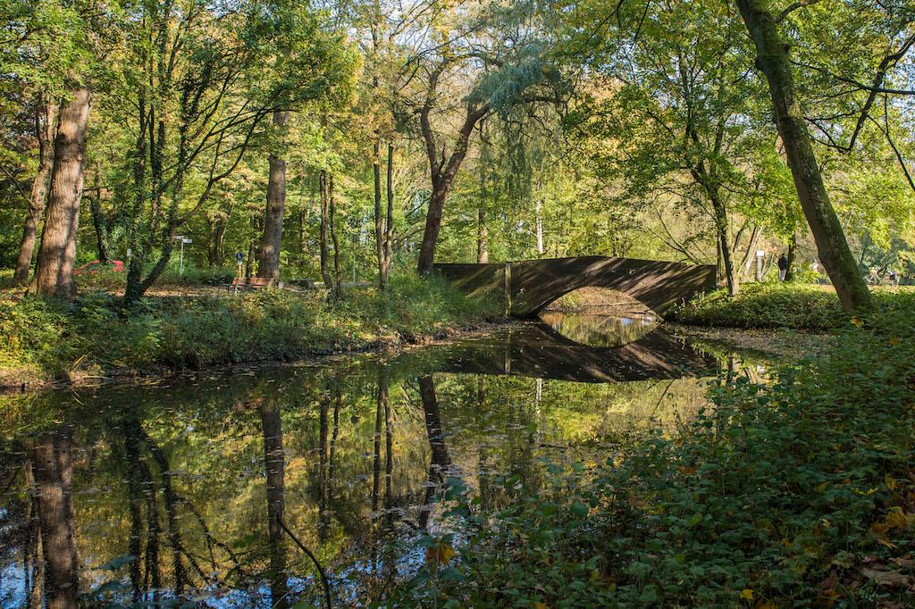Fotomotive im Stadtpark Wilhelmshaven finden