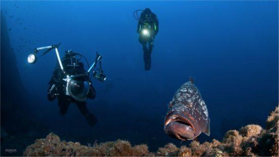 Unterwasser Frank Interview