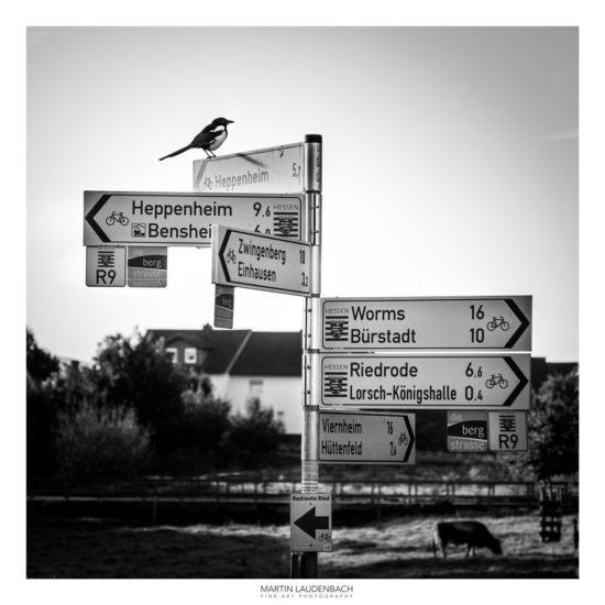 Vogelperspektive Bergstrasse von Martin Lauterbach