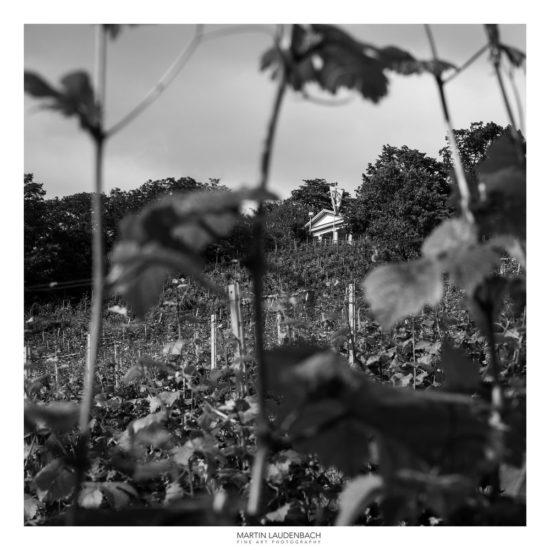 Weinbaugebiet Bergstraße