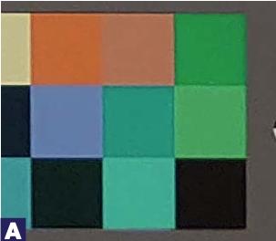 Die Farben: Kameratest