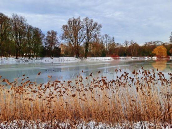Winter am Berger See in Gelsenkirchen - Februar 2021